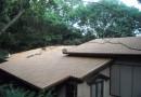 屋根 後 (2)