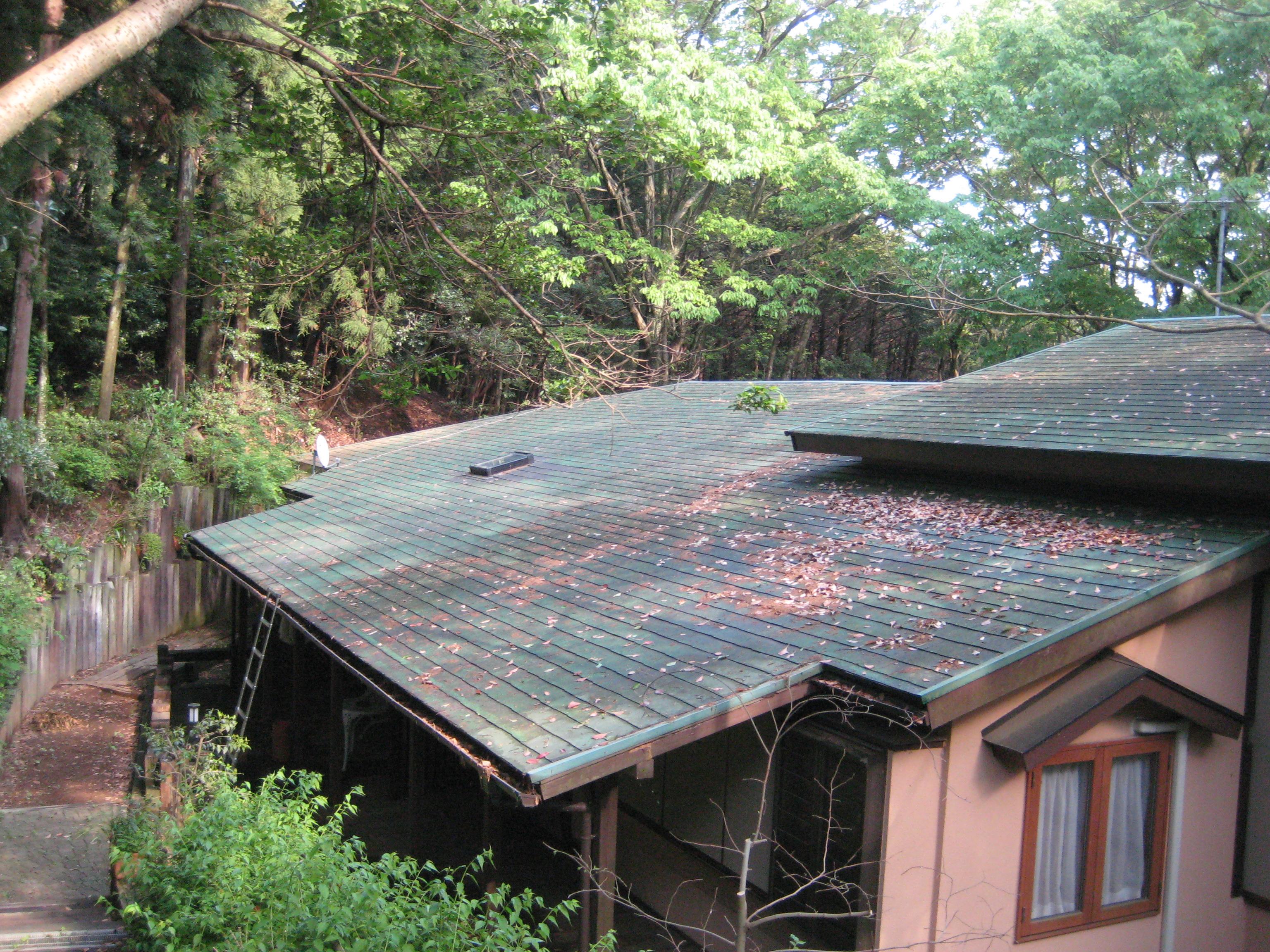 屋根 前 (2)